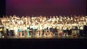 Chorus shades 2013